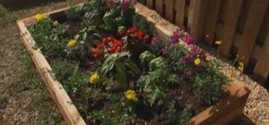 Build a raised flower or garden bed with Lowe's