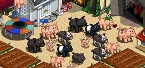Pigpens