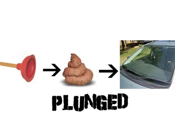 Plunged