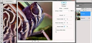 Reduce color noise with filters in Adobe Photoshop CS5