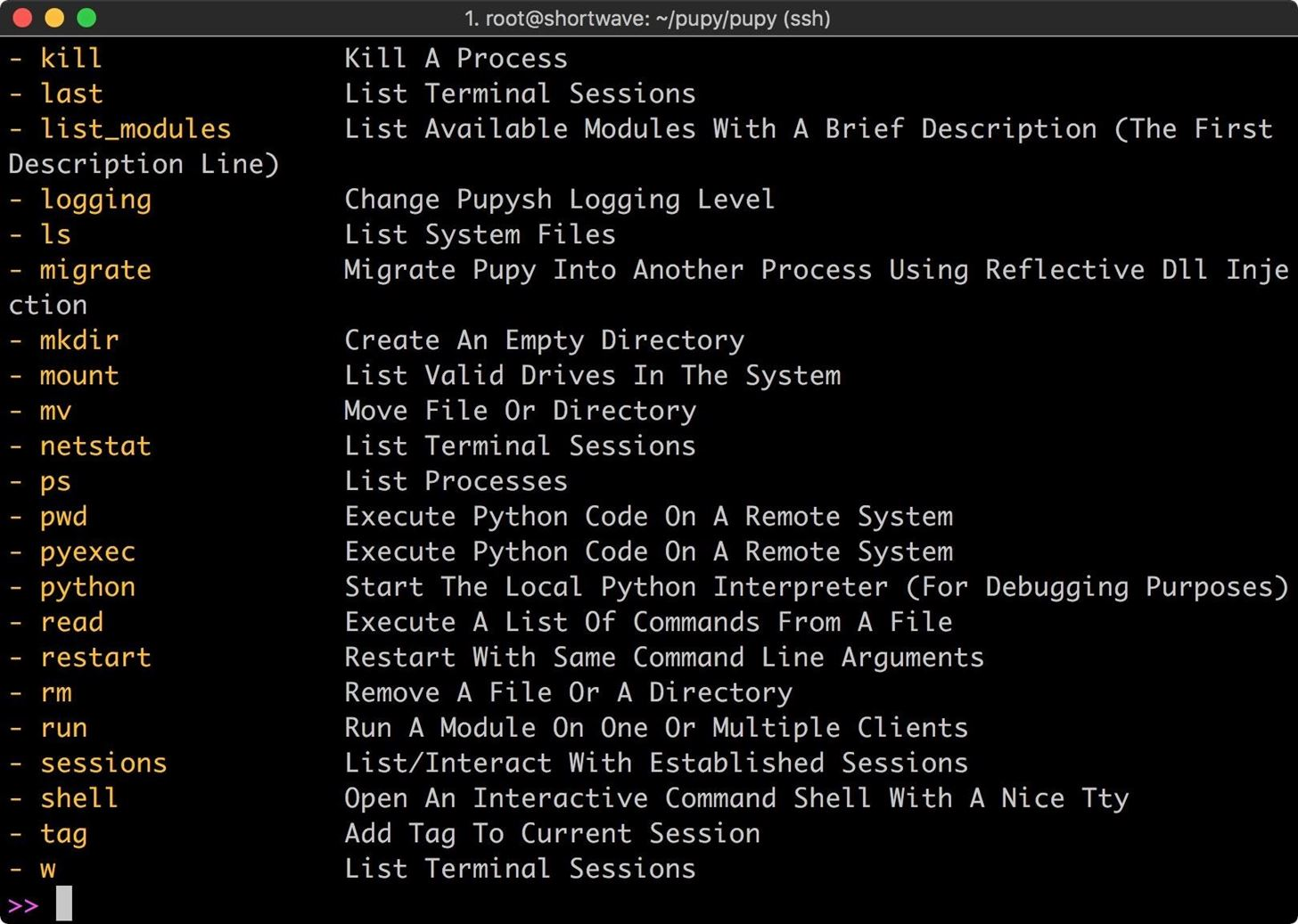 How to Use Pupy, a Linux Remote Access Tool