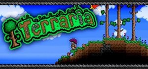 Set Terraria to widescreen for better viewing