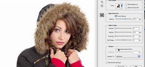 Make selections with Photoshop CS5's Refine Edge tool