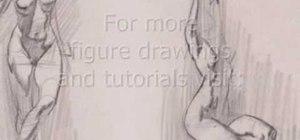 Draw limbs