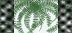 Create fern leaves within Adobe Photoshop CS4 or CS5