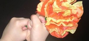 Make a tissue paper flower