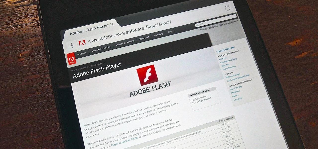 Adobe Flash Player n'est pas le seul programme à mettre à jour régulièrement mais il est très répandu et donc une cible privilégiée pour les pirates. Vérifiez régulièrement la mise à jour de vos autres logiciels, notamment ceux proposés par votre système Windows.
