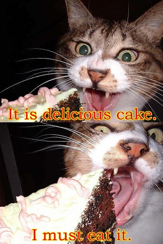NOM NOM NOM Cats & Dogs Yum Cake, Too