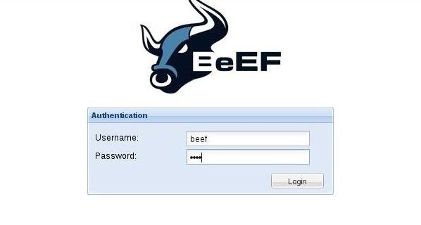 Hack Like a Pro: How to Hack Web Browsers with BeEF