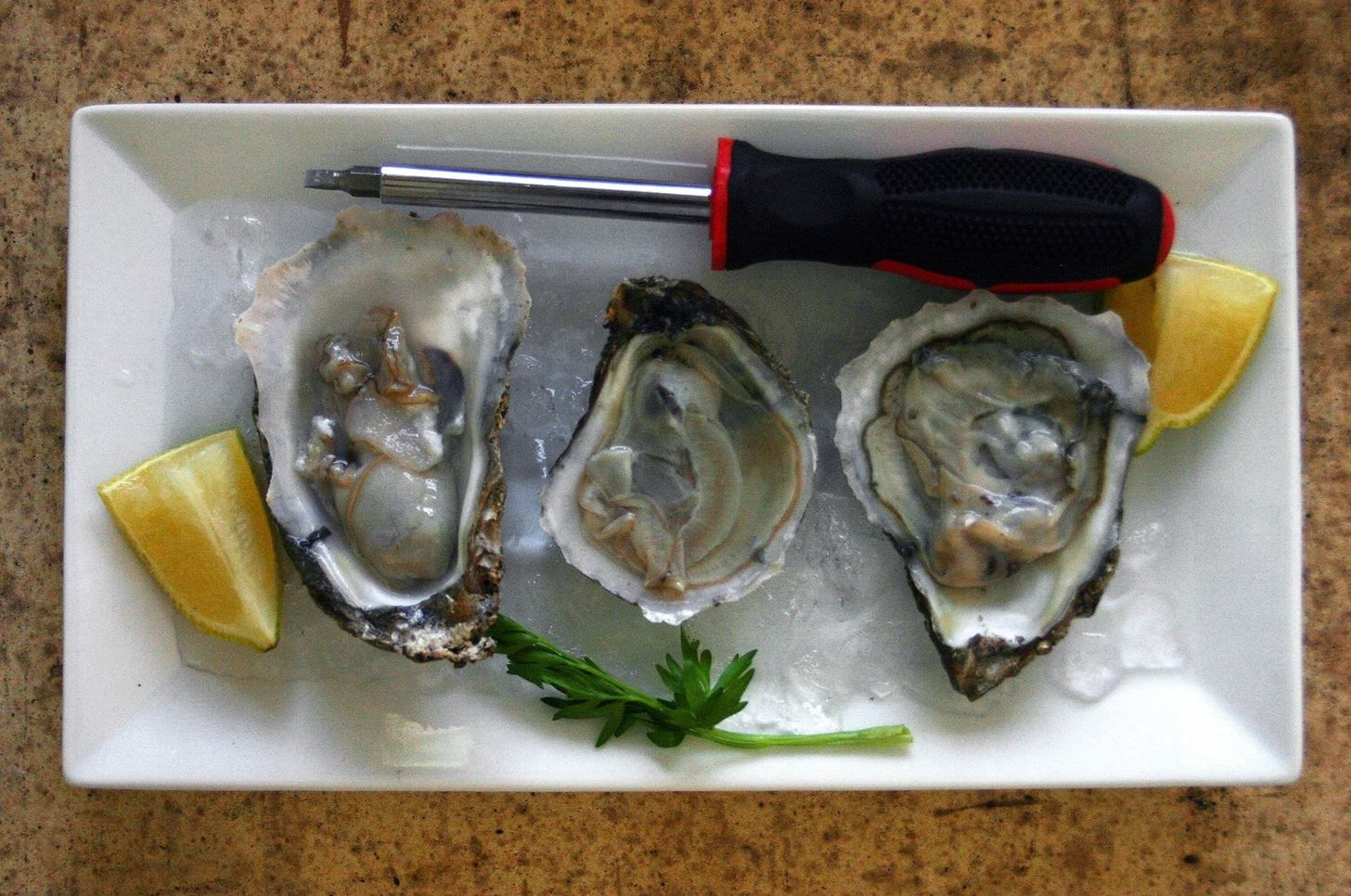 How to Shuck an Oyster Without an Oyster Knife