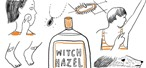 Liquid Witch Hazel: 12 Reasons Why You Should Have Some at Home