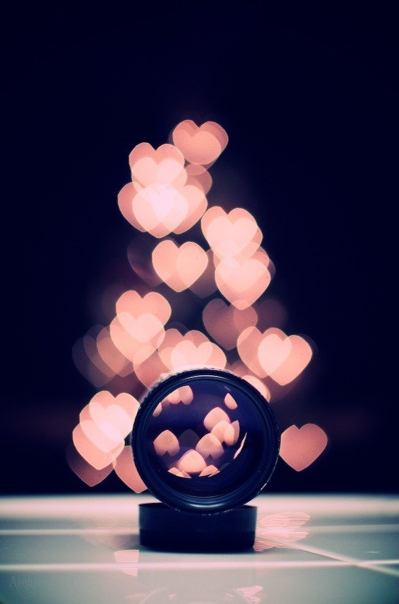 An Extensive Guide to Creating Bokeh Photography