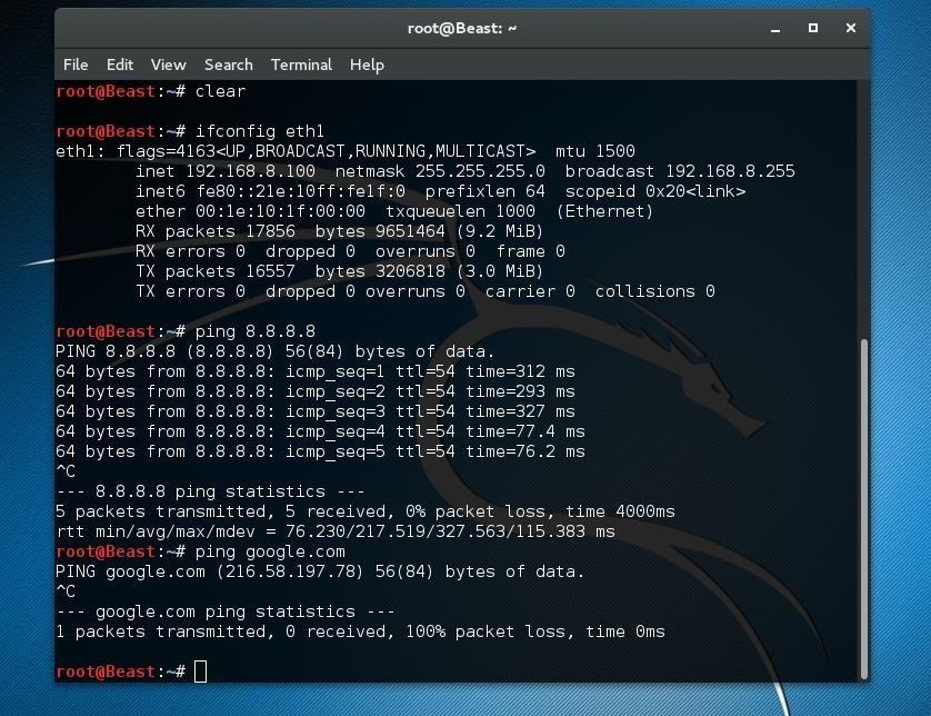 Kali Linux 2.0 Internet Access Proble