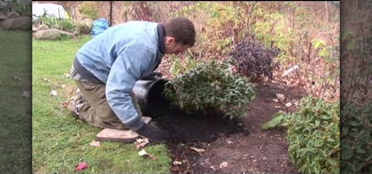 How to lay down mulch for new plants in the winter for Laying out your vegetable garden
