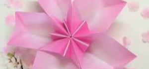 Origami a cherry blossom dish