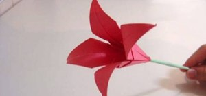 Make an origami lily flower