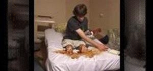 Perform a Texas Chainsaw Massacre prank