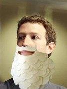 Beard Lee
