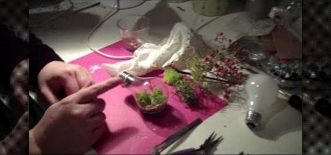 How To Create A Light Bulb Terrarium Gardening Wonderhowto