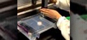 Perform agarose gel electrophoresis in the lab
