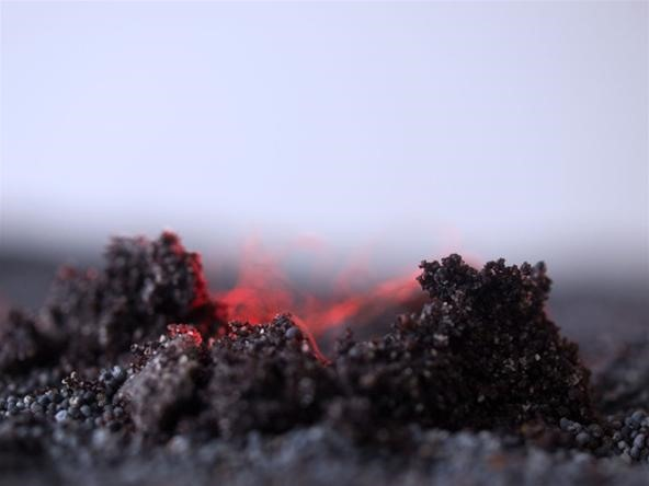 Edible (and Itchy) Icelandic Landscapes