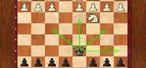 Use the Scandinavian defense in chess openings