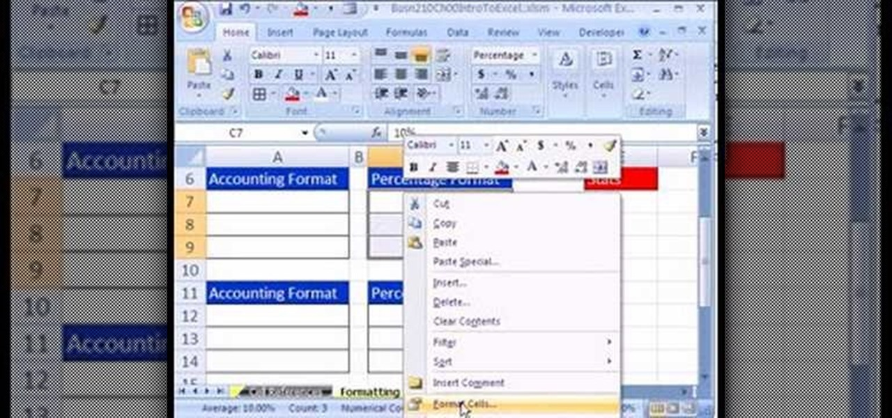 How to Apply accounting & percentage formatting in Excel ...