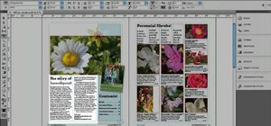 Span and split columns in Adobe InDesign CS5