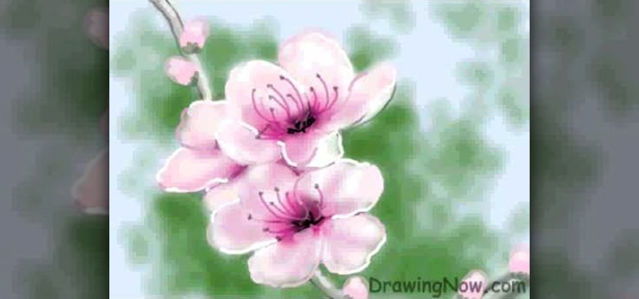 how to draw a peach blossom drawing illustration wonderhowto