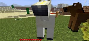 Tame a horse with the Mo' Creatures Mod in Minecraft