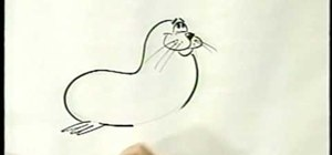 Draw a cartoon seal