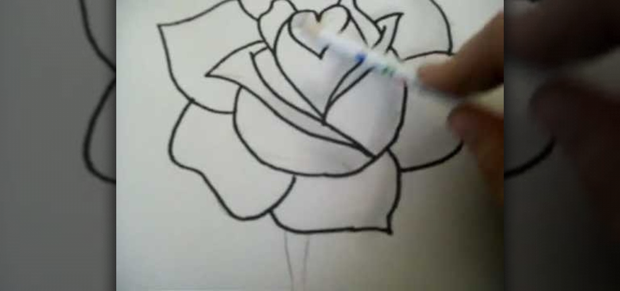 How to Draw a rose step by step with pencil « Drawing & Illustration