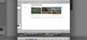 Build a website in Aperture