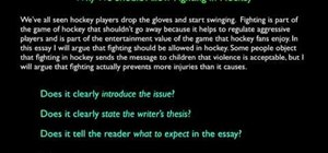 Write an introduction to an argumentative essay