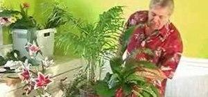 Design a tropical basket arrangement
