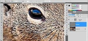 Use high-pass sharpening in Adobe Photoshop CS5