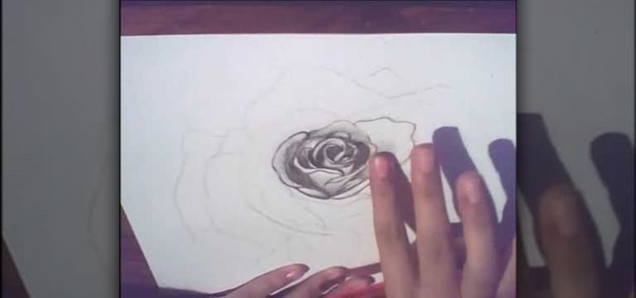 How to draw a rose for beginners drawing illustration for How to draw a rose step by step for beginners