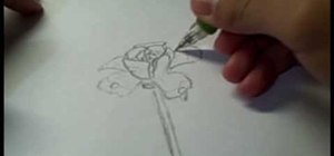 Someone Drawing A Flower A person drawing a flowerSomeone Drawing A Flower