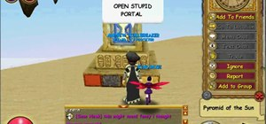 Get the Secret Shopper badge in Wizard101 (12/12/09)