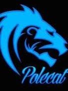 Jordan Polecat
