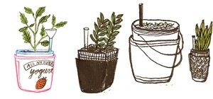 Make a Self-Irrigating Planter with Yogurt Containers
