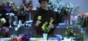 Make a Forsythia and Pansy centerpiece