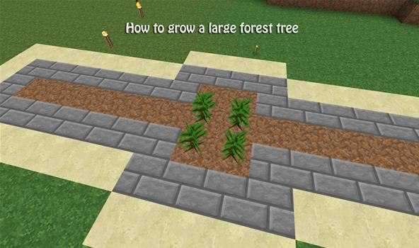 Easy Forest Tree Drawing How to Build a Tree Farm in