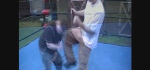Do the Pedigree pro wrestling move