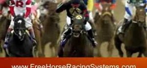 Avoid horse race betting scams