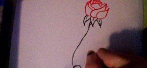 Draw an easy rose with stem, step by step