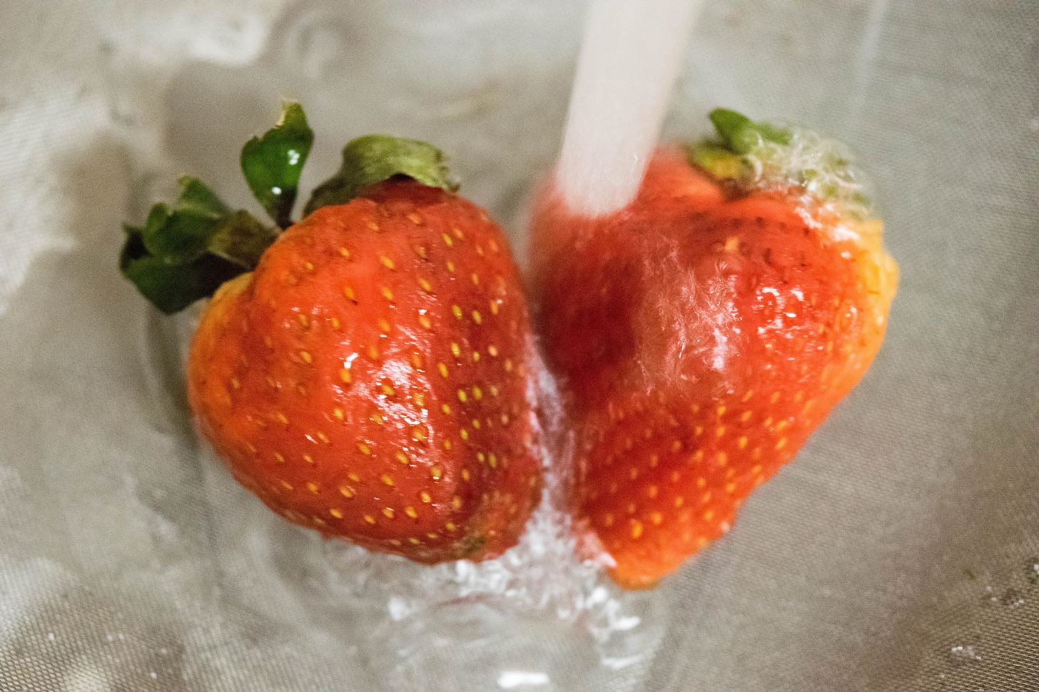 Tested: The Best Way to Keep Strawberries Fresh
