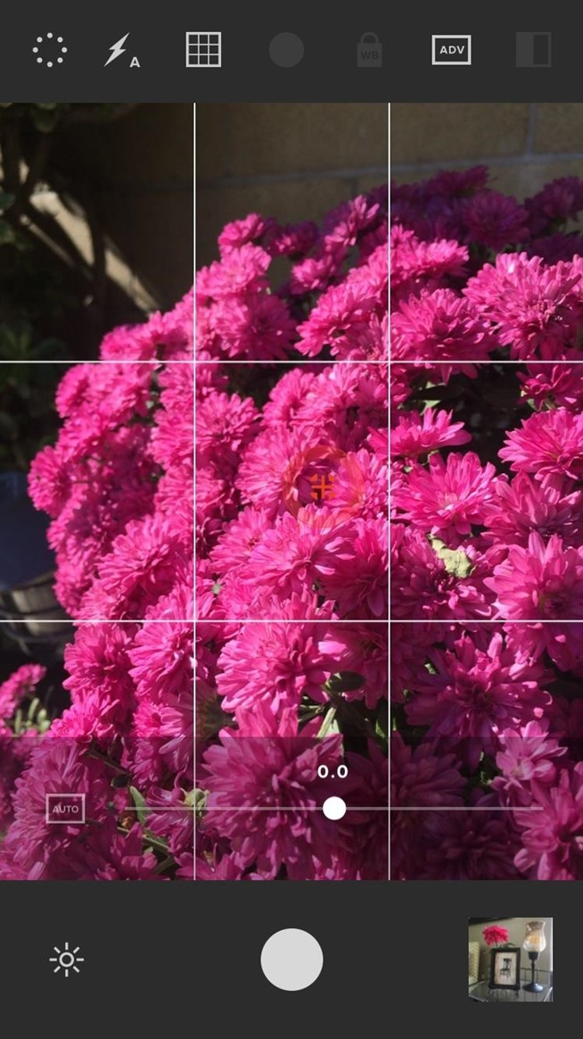 The 8 Best Free Photography Apps for iPhone