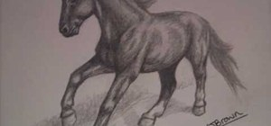 Easily draw a horse