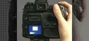 Obtain a custom white balance on a Fuji S3 camera